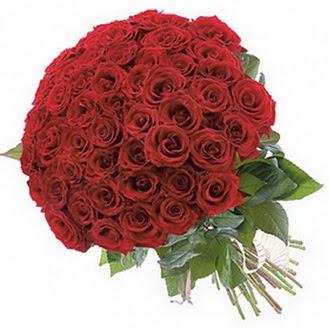 Bingöl Gölüm Çiçek güvenli kaliteli hızlı çiçek  101 adet kırmızı gül buketi modeli