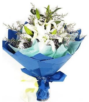 Bingöl Gölüm Çiçek anneler günü çiçek yolla  4 adet dal kazablankadan görsel buket