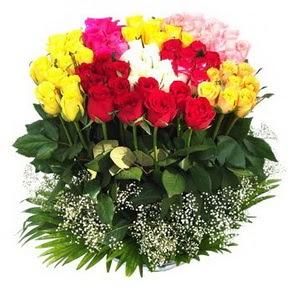 Bingöl Gölüm Çiçek çiçek mağazası , çiçekçi adresleri  51 adet renkli güllerden aranjman tanzimi