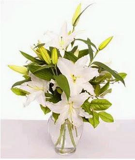 Bingöl Gölüm Çiçek çiçek gönderme  2 dal cazablanca vazo çiçeği
