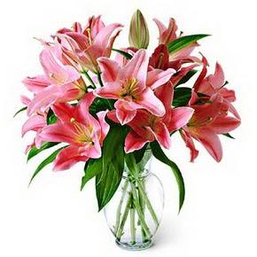 3 dal kazablanka görsel vazosu  Bingöl Gölüm Çiçek internetten çiçek siparişi