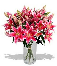 4 dal cazablanca görsel vazosu  Bingöl Gölüm Çiçek çiçekçi mağazası