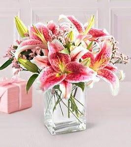 2 dal kazablanka görsel vazosu  Bingöl Gölüm Çiçek çiçek siparişi sitesi