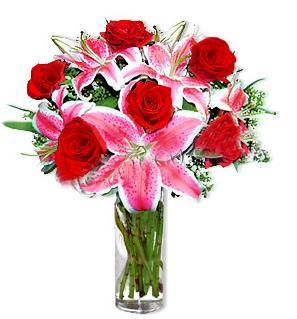 Bingöl Gölüm Çiçek çiçek yolla  1 dal cazablanca ve 6 kırmızı gül çiçeği