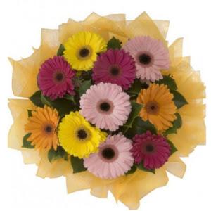 Bingöl Gölüm Çiçek İnternetten çiçek siparişi  11 adet karışık gerbera çiçeği buketi