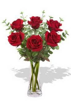 Bingöl Gölüm Çiçek çiçekçi mağazası  6 kırmızı gül vazosu