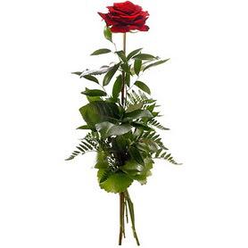 Bingöl Gölüm Çiçek online çiçekçi , çiçek siparişi  1 adet kırmızı gülden buket