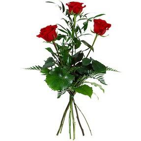 Bingöl Gölüm Çiçek uluslararası çiçek gönderme  3 adet kırmızı gülden buket