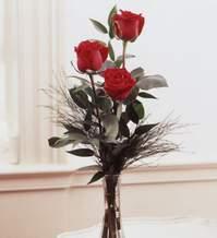 Bingöl Gölüm Çiçek internetten çiçek satışı  Vazoda 3 adet güzel gül