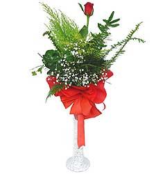 Bingöl Gölüm Çiçek anneler günü çiçek yolla  Cam vazoda masum tek gül