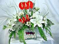 Bingöl Gölüm Çiçek çiçek mağazası , çiçekçi adresleri  Anthurim Kazablanka  gül