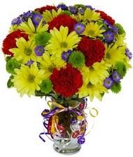 En güzel hediye karışık mevsim çiçeği  Bingöl Gölüm Çiçek hediye çiçek yolla
