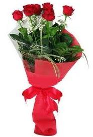 Çiçek yolla sitesinden 7 adet kırmızı gül  Bingöl Gölüm Çiçek internetten çiçek satışı