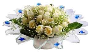 Bingöl Gölüm Çiçek çiçek online çiçek siparişi  11 adet Beyaz güller özel cam tanzim