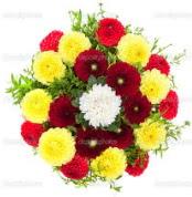 Bingöl Gölüm Çiçek çiçekçi mağazası  13 adet mevsim çiçeğinden görsel buket