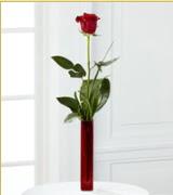 Vazo içerisinde 1 adet kırmızı gül  Bingöl Gölüm Çiçek internetten çiçek siparişi