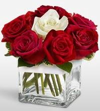 Tek aşkımsın çiçeği 8 kırmızı 1 beyaz gül  Bingöl Gölüm Çiçek uluslararası çiçek gönderme