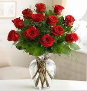 Vazo içerisinde 12 kırmızı gül  Bingöl Gölüm Çiçek çiçek satışı