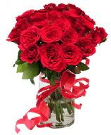 21 adet vazo içerisinde kırmızı gül  Bingöl Gölüm Çiçek çiçek satışı
