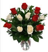 Vazo içerisinde 6 kırmızı 6 beyaz gül  Bingöl Gölüm Çiçek hediye çiçek yolla