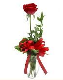 vazo içerisinde 1 adet kırmızı gül  Bingöl Gölüm Çiçek çiçekçi telefonları