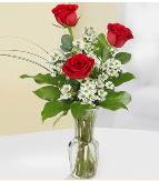 Vazo içerisinde 3 adet kırmızı gül  Bingöl Gölüm Çiçek çiçek satışı