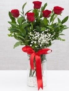 cam vazo içerisinde 5 adet kırmızı gül  Bingöl Gölüm Çiçek cicekciler , cicek siparisi