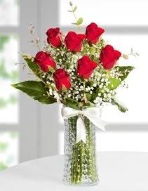 Cam vazoda 7 adet kırmızı gül  Bingöl Gölüm Çiçek çiçek , çiçekçi , çiçekçilik