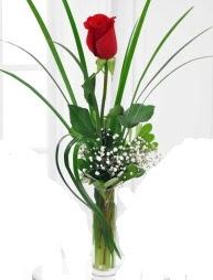 Cam içerisinde 1 kırmızı gül  Bingöl Gölüm Çiçek çiçek gönderme sitemiz güvenlidir