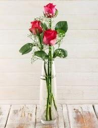 Cam içerisinde 3 kırmızı gül  Bingöl Gölüm Çiçek çiçek satışı