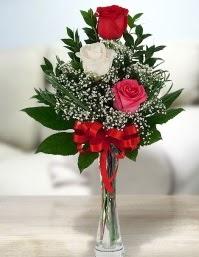 Camda 2 kırmızı 1 beyaz gül  Bingöl Gölüm Çiçek ucuz çiçek gönder