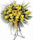 Bingöl Gölüm Çiçek yurtiçi ve yurtdışı çiçek siparişi  Sari kazablanka Ferforje