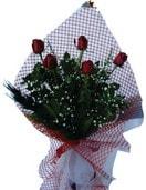 Bingöl Gölüm Çiçek çiçekçi mağazası  5 adet kirmizi güllerden buket
