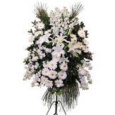 Bingöl Gölüm Çiçek cicek , cicekci  Ferforje beyaz renkli kazablanka