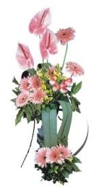 Bingöl Gölüm Çiçek güvenli kaliteli hızlı çiçek  Pembe Antoryum Harikalar Rüyasi
