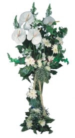 Bingöl Gölüm Çiçek çiçek mağazası , çiçekçi adresleri  antoryumlarin büyüsü özel