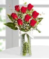 7 Adet vazoda kırmızı gül sevgiliye özel  Bingöl Gölüm Çiçek çiçek siparişi sitesi