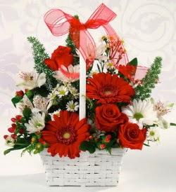 Karışık rengarenk mevsim çiçek sepeti  Bingöl Gölüm Çiçek internetten çiçek siparişi