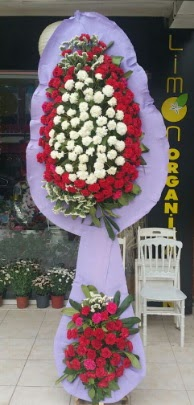 Çift katlı işyeri açılış çiçek modeli  Bingöl Gölüm Çiçek ucuz çiçek gönder