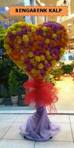 Ankara mevsim çiçeklerinden kalp perförje  Bingöl Gölüm Çiçek çiçekçi telefonları