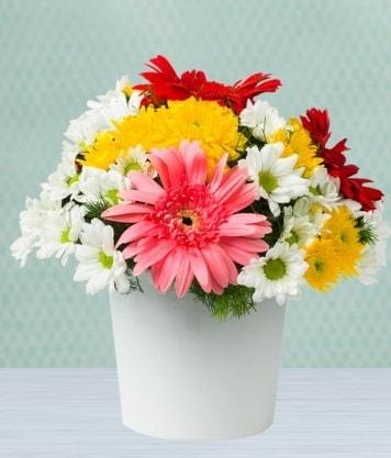 Seramik Vazoda Gelbera ve Papatya  Bingöl Gölüm Çiçek çiçek gönderme