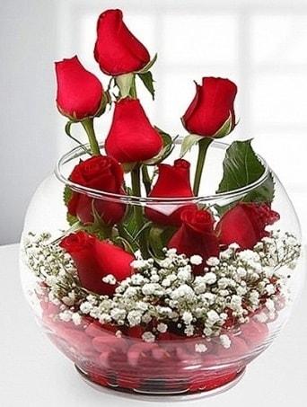 Kırmızı Mutluluk fanusta 9 kırmızı gül  Bingöl Gölüm Çiçek çiçek siparişi sitesi