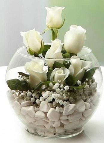Beyaz Mutluluk 9 beyaz gül fanusta  Bingöl Gölüm Çiçek çiçek siparişi sitesi