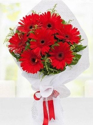 Kırmızı Gelbera Buketi  Bingöl Gölüm Çiçek internetten çiçek siparişi
