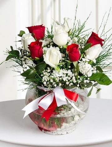 Aşk Küresi  5 beyaz 5 kırmızı gül fanusta  Bingöl Gölüm Çiçek internetten çiçek satışı