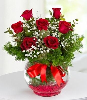 fanus Vazoda 7 Gül  Bingöl Gölüm Çiçek çiçek , çiçekçi , çiçekçilik