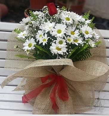 Papatya 1 adet kırmızı gül buketi  Bingöl Gölüm Çiçek çiçekçiler