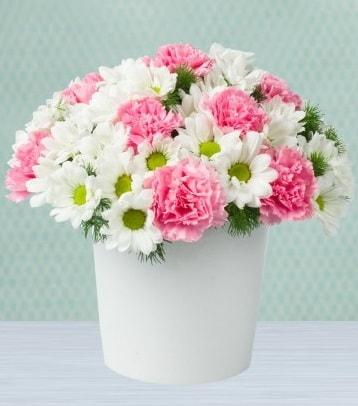 Seramik vazoda papatya ve kır çiçekleri  Bingöl Gölüm Çiçek çiçek siparişi sitesi