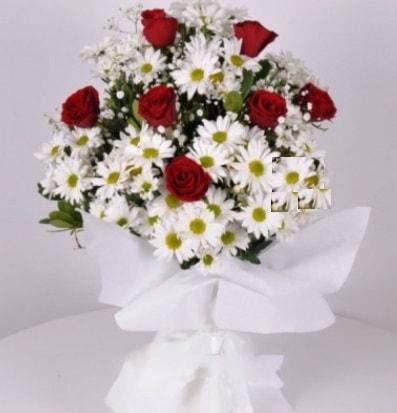 7 adet kırmızı gül ve papatyalar krizantem  Bingöl Gölüm Çiçek internetten çiçek satışı