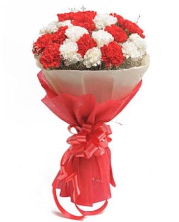 21 adet kırmızı beyaz karanfil buketi  Bingöl Gölüm Çiçek çiçek satışı